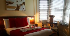 Swan towels in deluxe room at New Steine hotel