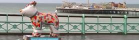 Autumn 2016 - What's On in Brighton